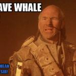 gurneyhalleckwhalesign