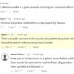 comments5