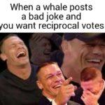 john-cena-laughs-at-whale-jokes